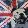 Great british bully